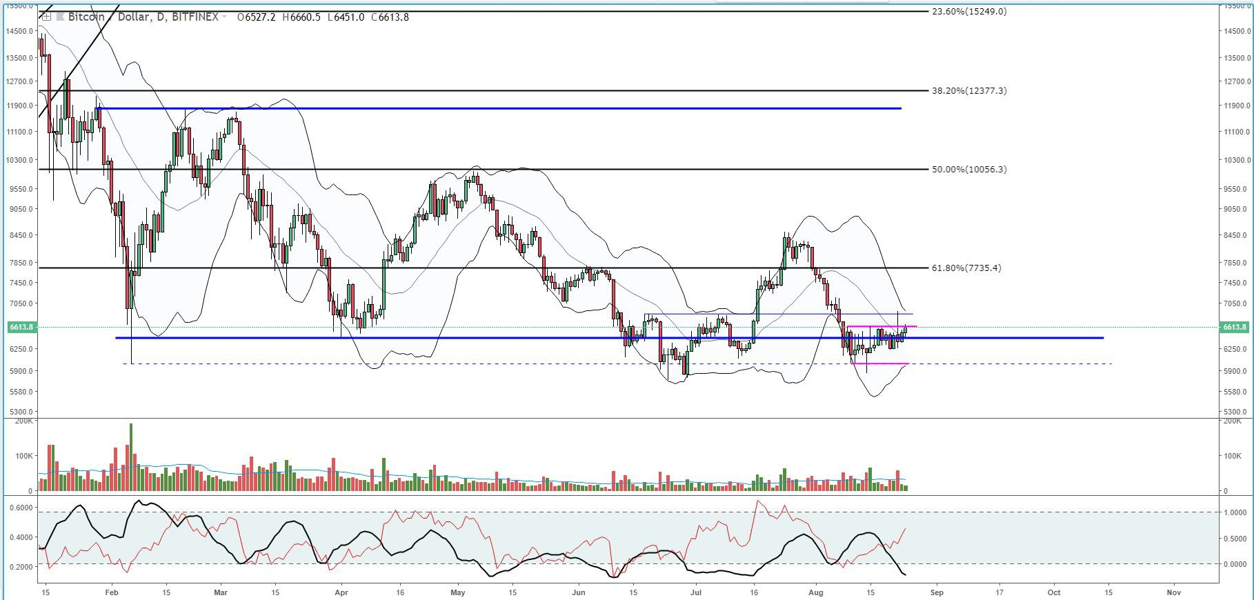 Bitcoin Price Analysis: High Shorts Count Could Signal Price Hike