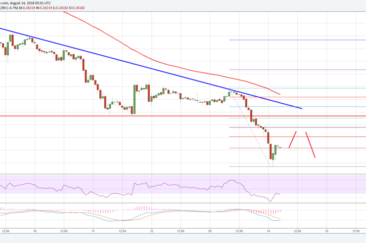 Ripple Price Analysis: XRP/USD Nosedives, Recoveries Remain Limited 1