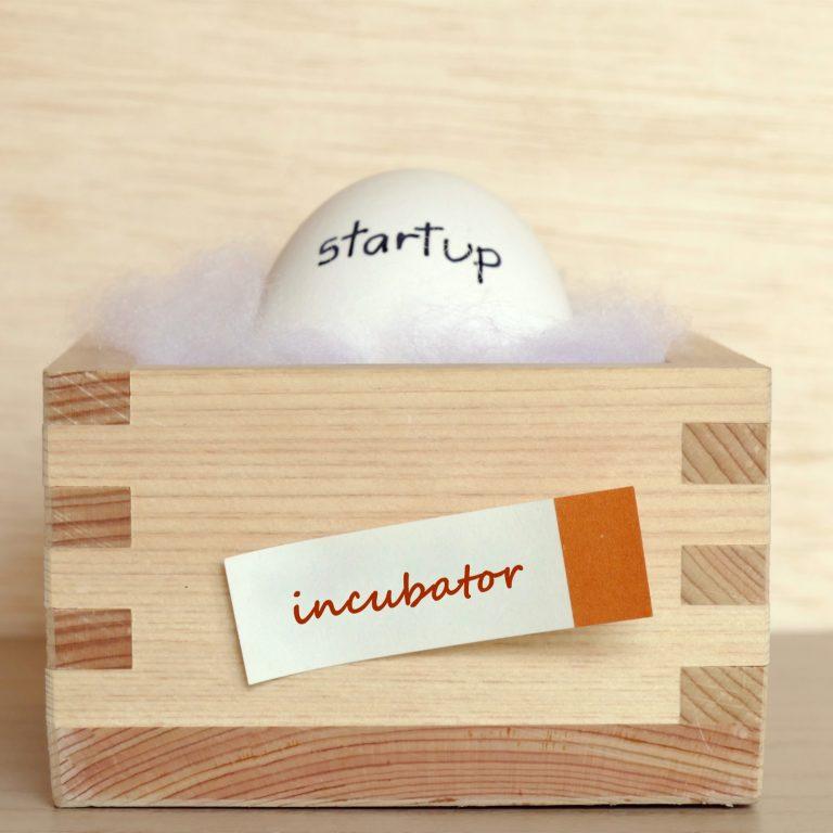 startup Incubator
