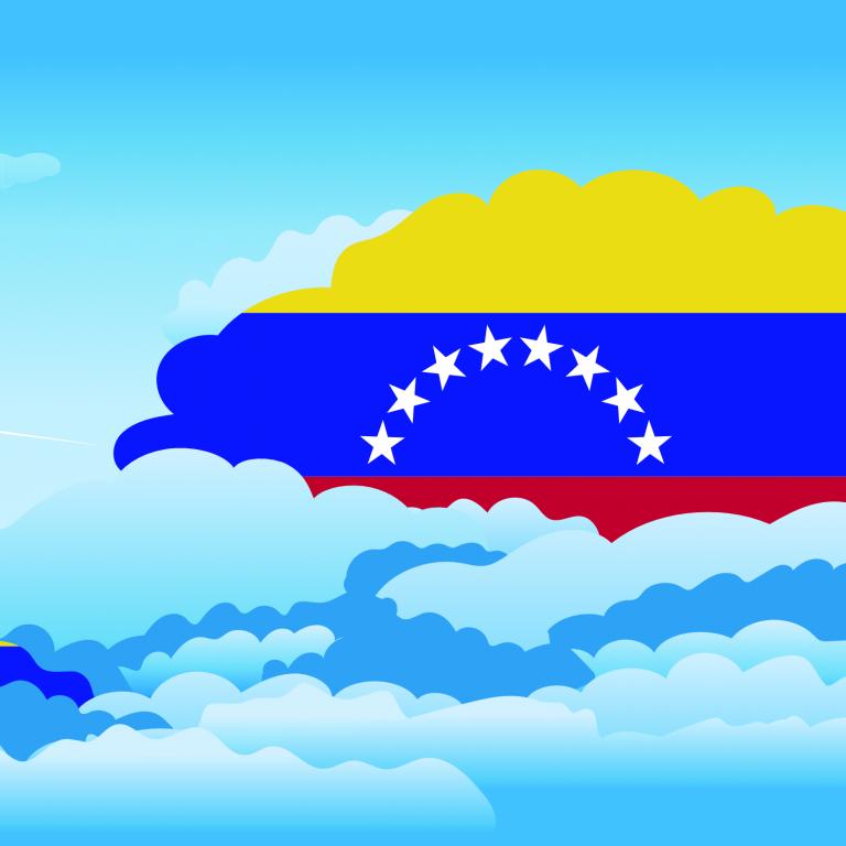 venezuela banner
