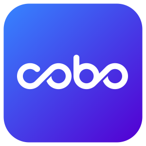 Chinese Cryptocurrency Wallet Cobo Raises $13 Million in Series A Funding