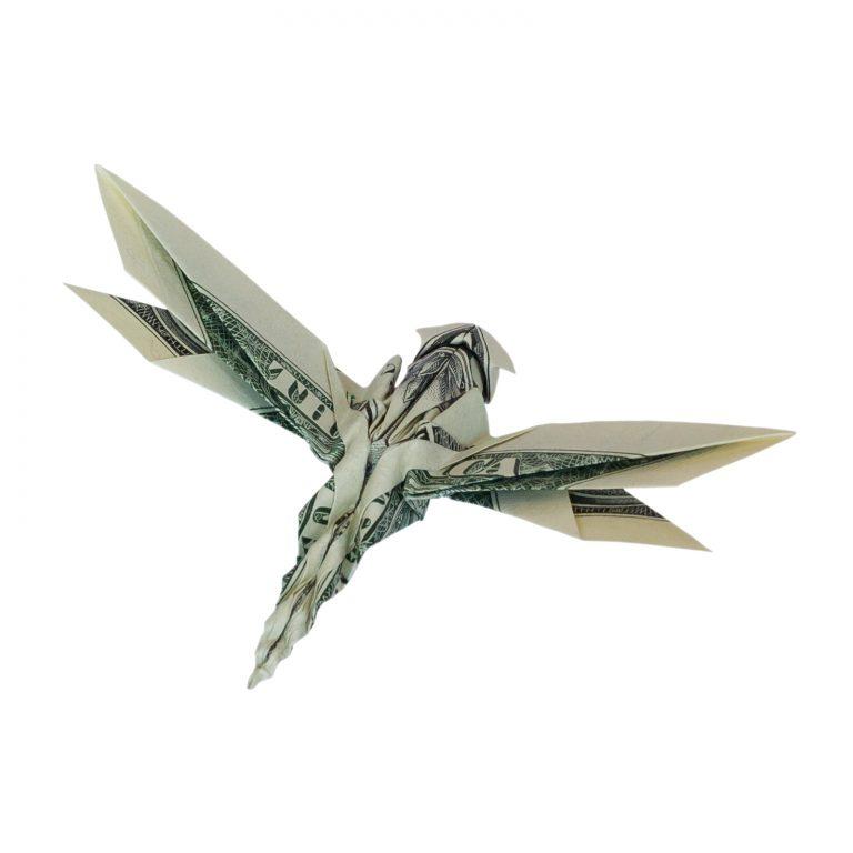 Dragonfly money