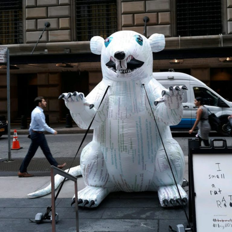 A Bitcoin Rat Is Occupying Wall Street 3