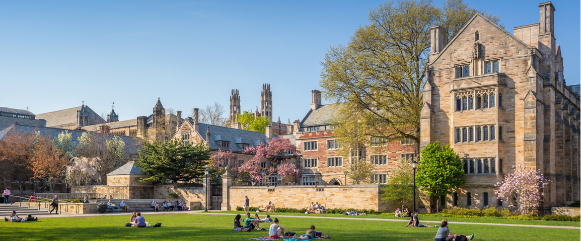 Yale University in on $400 Million Paradigm Crypto Fund – Will Others Follow? 10