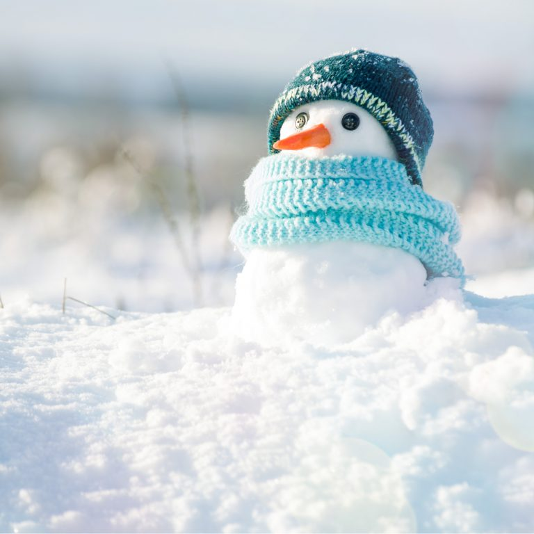 The Daily: ICOs Hunker Down for Crypto Winter, Meta Stablecoins Are Coming 1
