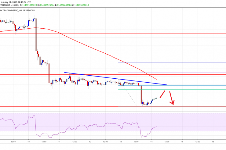 Crypto Market Update: Bitcoin Cash, Tron (TRX), ADA, IOTA Price Analysis 1