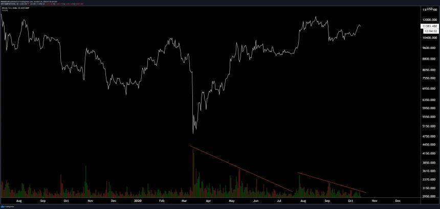 bitcoin bull dozer