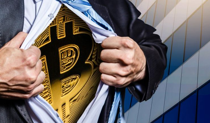 price increase drives 98 of bitcoin holders in a state of profit 768x432 1
