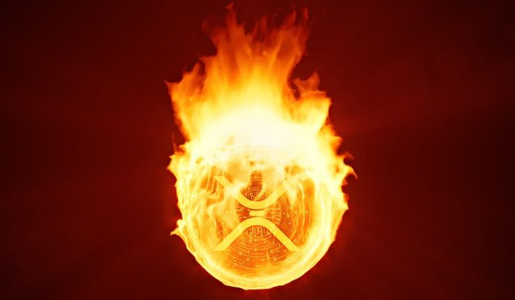 xrp crash burns other crypto asset values btc price remains unscathed 768x432 1