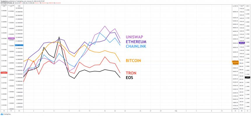 bitcoin versus altcoins