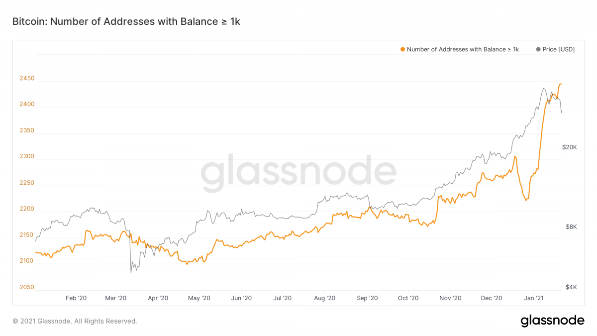 glassnode studio bitcoin number of addresses with balance 1 k 3 1200x675 1