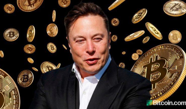 elon likes bitcoin 768x432 1