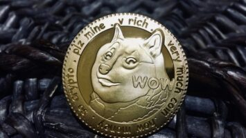 anonymous dogecoin holder donates its profits to a dog shelter in florida 768x432 1