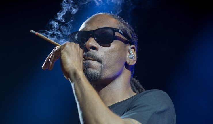 hip hop star snoop dogg says bitcoin here to stay lauds nfts for creating direct connection between artists and fans 768x432 1